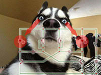 钛合金狗眼闪烁电路